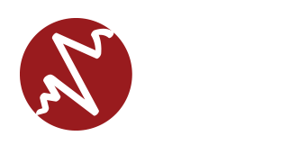 Seismic Systems